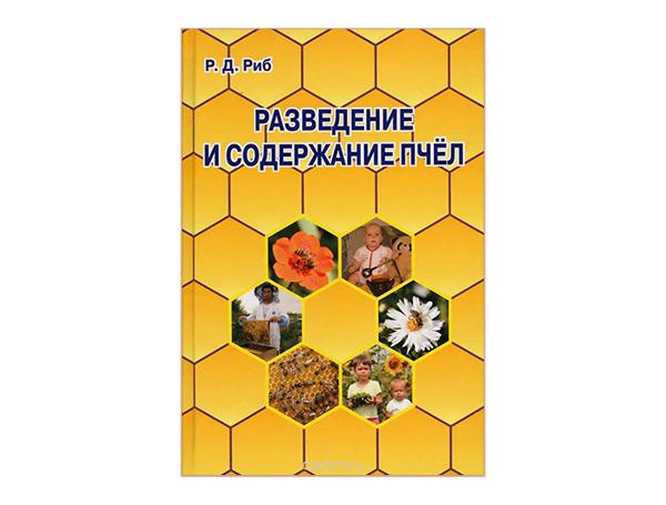 Учебник по английскому языку 5-6 класс читать